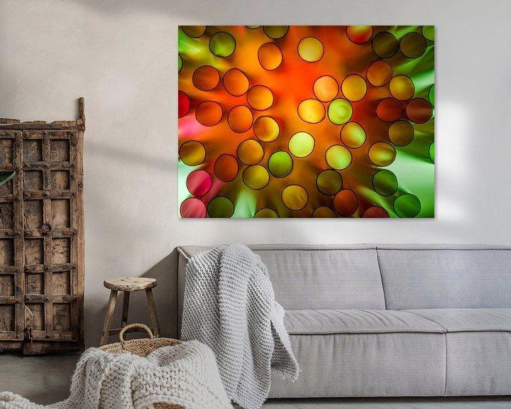 Sfeerimpressie: Color Explosie van Chris Clinckx