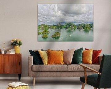 Ha Long Bay, Vietnam van Richard van der Woude