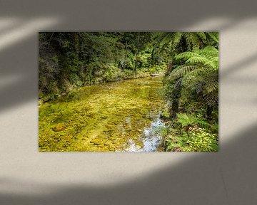 Effacer ruisseau dans Abel Tasman National Park, Nouvelle-Zélande sur Rietje Bulthuis