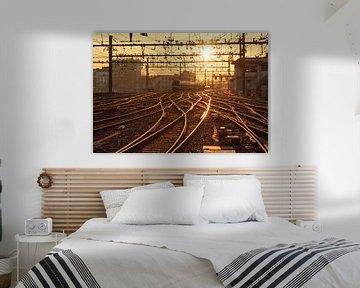 Bestemming zon! van Sander van der Werf