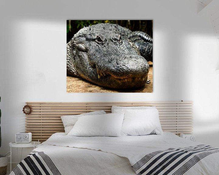 Beispiel: Alligator oder Krokodil von Atelier Liesjes