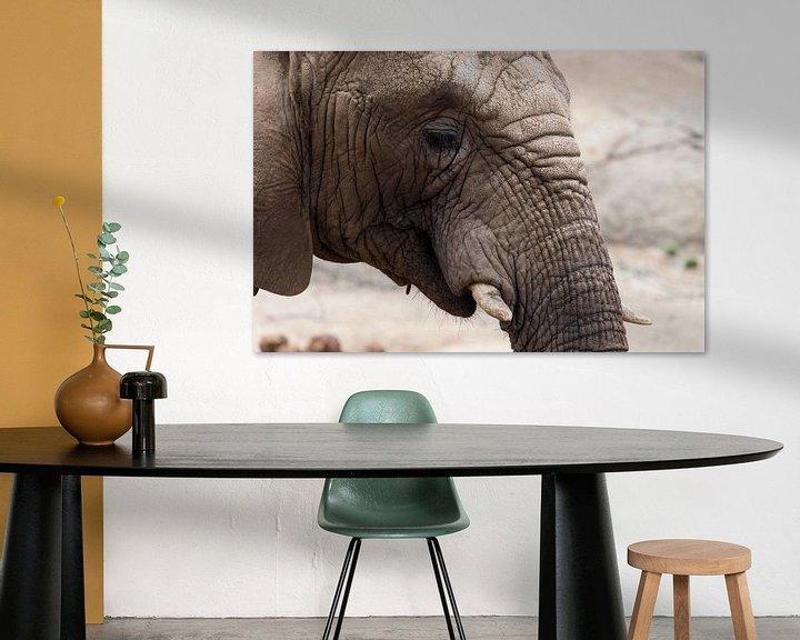 Beispiel: Afrikanischer Elefant von Atelier Liesjes
