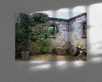 oude muur begroeid met planten van Compuinfoto .