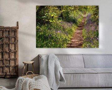 Wandelpad in het Wildrijk, Sint Maartenszee von Margreet Frowijn