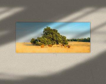 Roozendaalsche veld wildlife van Lex Scholten