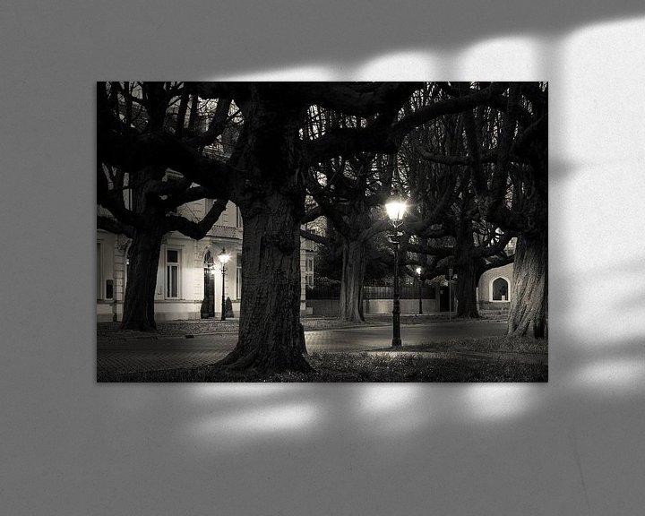 Sfeerimpressie: Kastanjebomen Sophialaan Den Haag van Raoul Suermondt