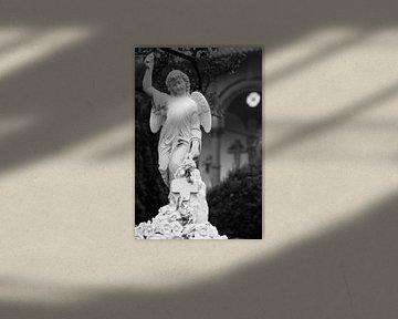 Engel in zwart wit von Raoul Suermondt