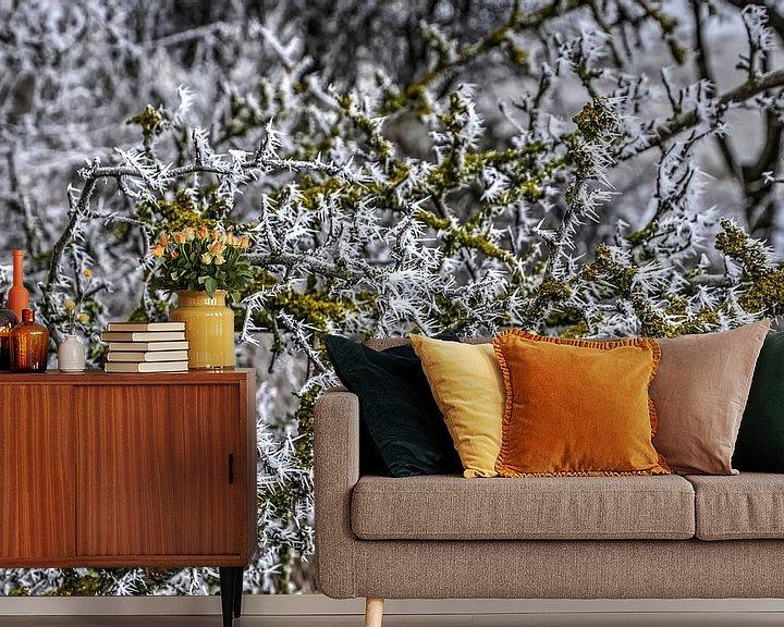 Sfeerimpressie behang: Rijp en groen van Frans Blok