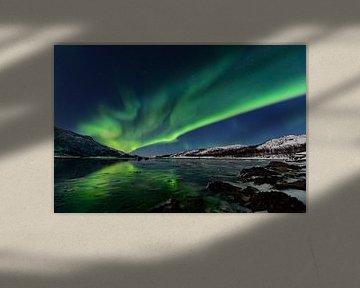 Lumière polaire nordique de l'aurore en ciel de nuit au-dessus de la Norvège nordique sur Sjoerd van der Wal