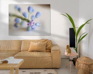 Blauw druifje von Cindy Arts