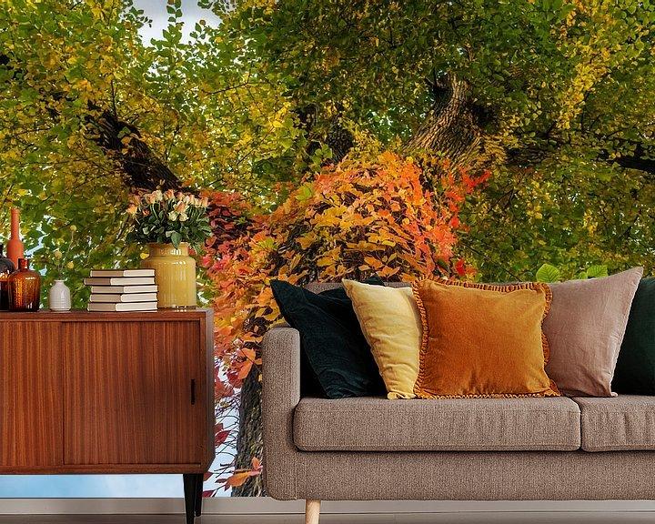 Sfeerimpressie behang: Boom met veelkleurige bladeren op de stam van Ronald Smits