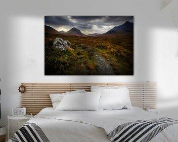 De droom heet Schotland von Steven Dijkshoorn