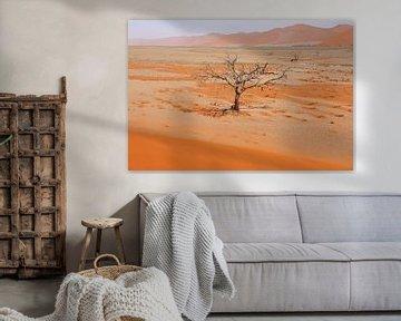 NAMIBIA ... Namib Desert Tree V van Meleah Fotografie