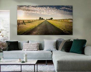 Lange wegen in Koroit Country in Victoria, Australië van Sven Wildschut