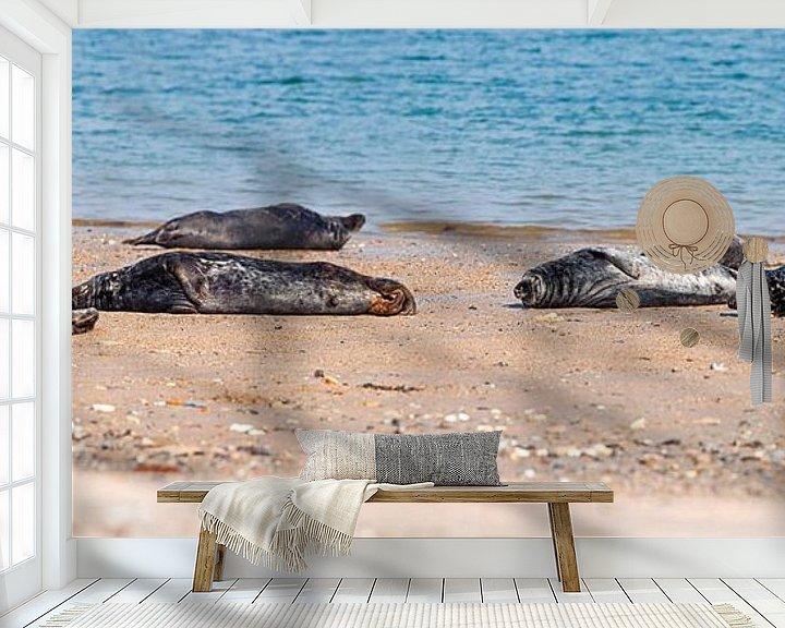 Sfeerimpressie behang: Panorama Zeehonden van Anton de Zeeuw
