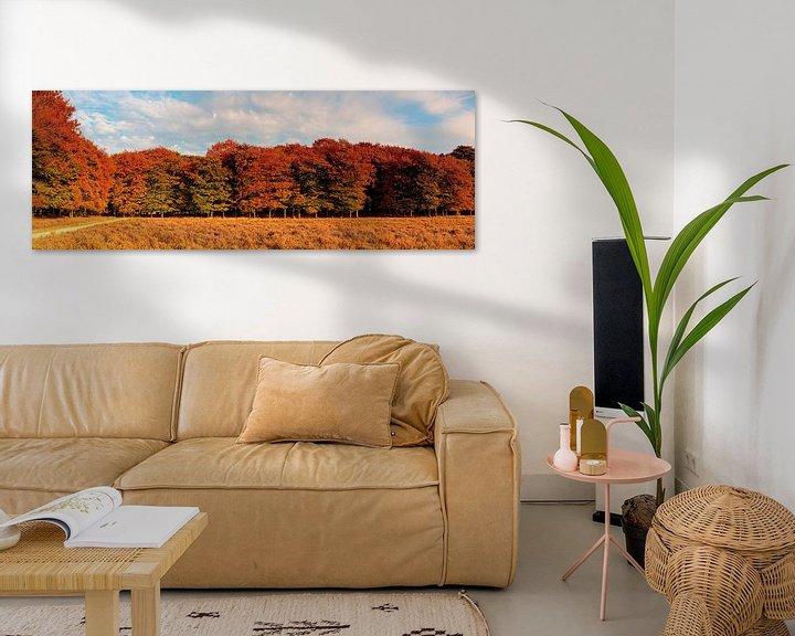 Sfeerimpressie: Panorama herfst kleuren van Anton de Zeeuw