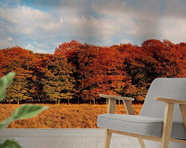 Sfeerimpressie behang: Panorama herfst kleuren van Anton de Zeeuw