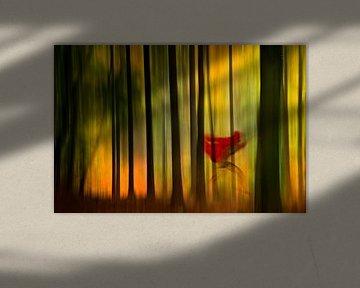Little Red Riding Hood van Els Baltjes