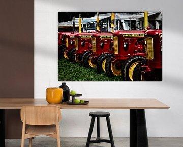 David Brown 880 tractoren op een rij