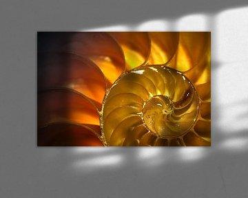 Gouden golf von Sonja Pixels