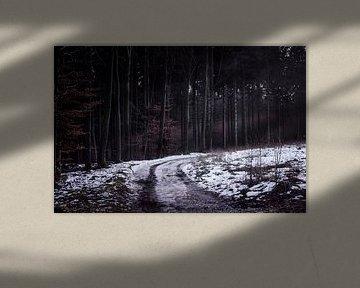 Het onbekende pad von AnyTiff (Tiffany Peters)