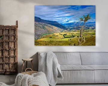 Lake County, Île du Sud, Nouvelle-Zélande sur Rietje Bulthuis