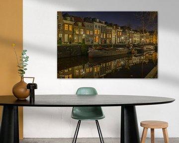 De Binnendieze van Den Bosch  van Freddie de Roeck