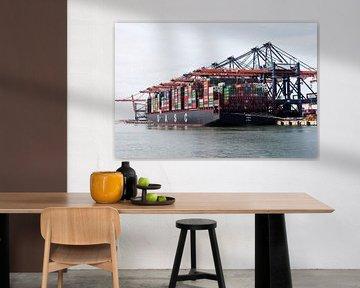 Containerschiff Rotterdam sur Irene Hoekstra