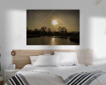 zonovergoten van Jeroen Schellevis