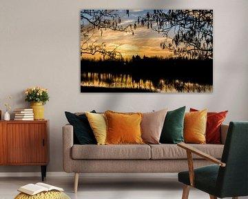 Zonsondergang park Assumburg van Yvonne van der Meij