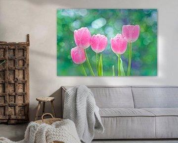 Tulpen von Jeannette Penris
