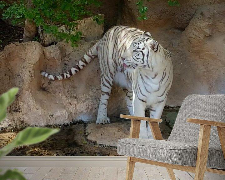 Sfeerimpressie behang: Een mooie bengaalse tijger die zijn/haar tong uitsteekt. A Beautiful Bengal Tiger sticking out its t van Jeffrey Glas