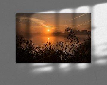 Gouden zonsopgang in de uiterwaard van de Lek bij Culemborg sur Jonathan Vandevoorde