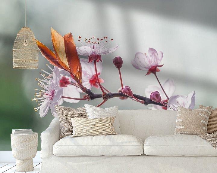Sfeerimpressie behang: Bloesemtak in het zonnetje van Arja Schrijver Fotografie