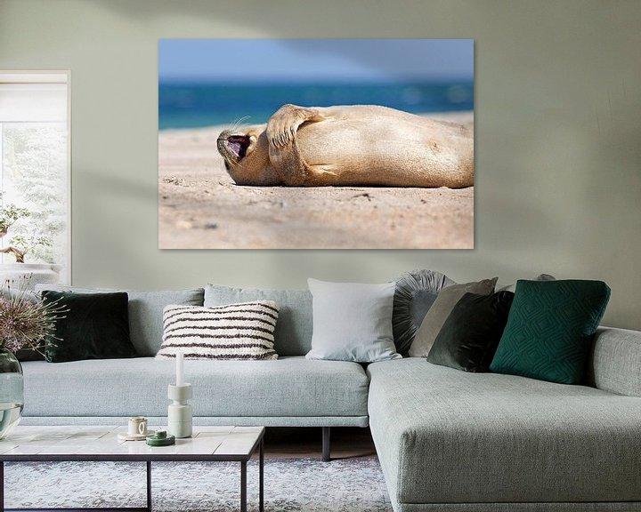 Sfeerimpressie: Blij zeehondje van Anton de Zeeuw