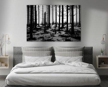 Spooky wood van Ruud de Soet
