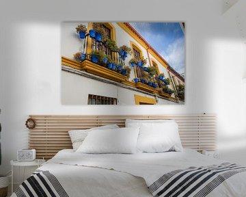 Prachtige kleurrijke gevel in zuid Spanje van Fotografiecor .nl