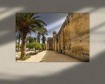 Het Alcazar paleis in Cordoba, Andalusië van Fotografiecor .nl