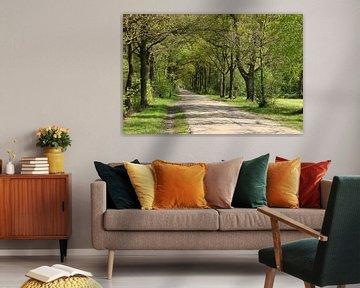 Laarbraakweg van Wim Zoeteman