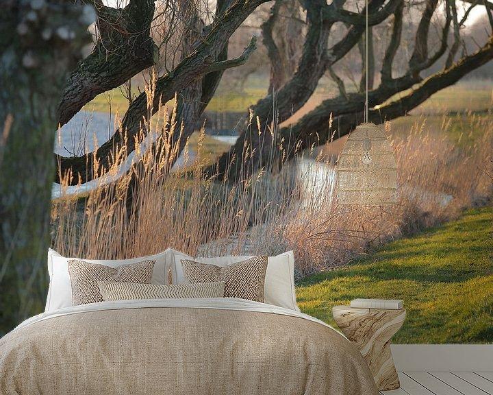 Sfeerimpressie behang: Sloot met riet en overhangende boomtakken in de avondzon van Ronald Smits