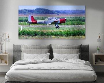 de Havilland Canada DHC-1 Chipmunk (WB671) van Roel Ovinge