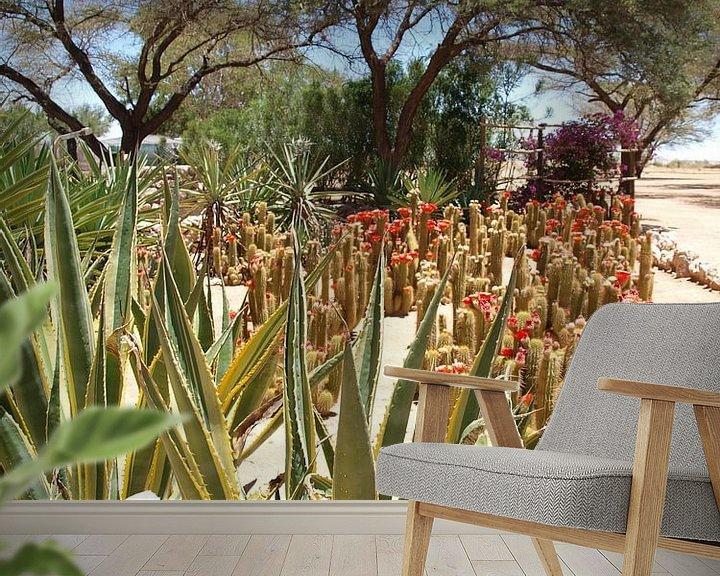Sfeerimpressie behang: Namibië cactussen bij Moose Backery van Annie Lausberg-Pater