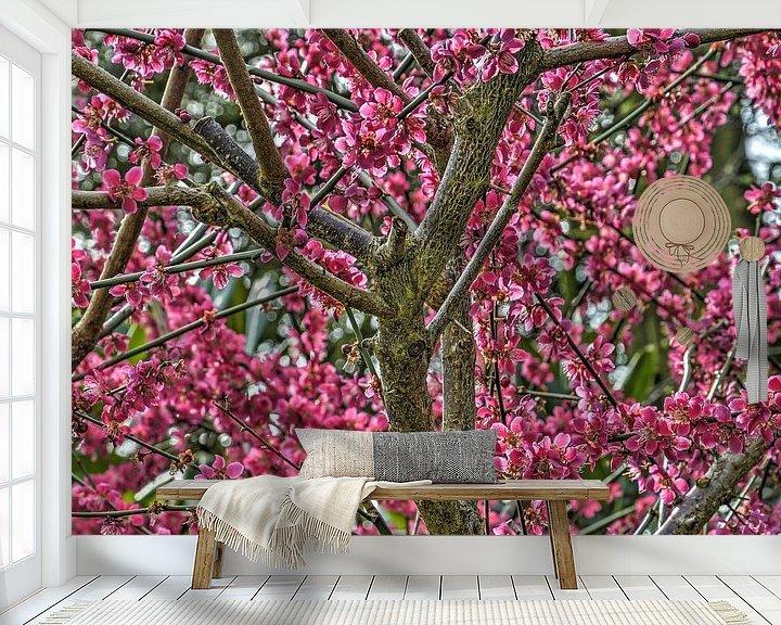 Sfeerimpressie behang: Japanse abrikoos van Frans Blok