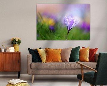 Spring Palette van LHJB Photography