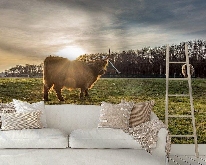 Sfeerimpressie behang: Hooglander met rovershut texel van Texel360Fotografie Richard Heerschap