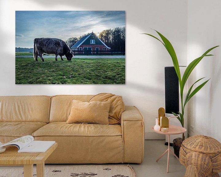Sfeerimpressie: Hooglander met rovershut texel van Texel360Fotografie Richard Heerschap
