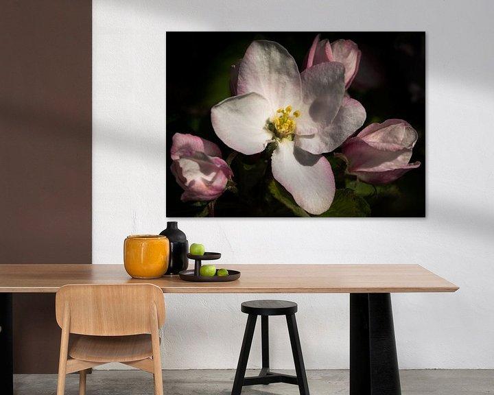 Sfeerimpressie: Appelbloesem - Apple blossoms van Leo Langen