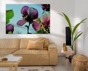 Bloem aan de Tulpenboom 2.3 von Marian Klerx