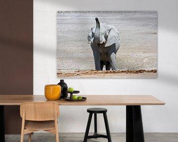 NAMIBIA ... Elephant fun III von Meleah Fotografie