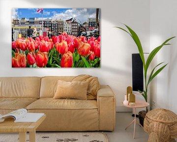 Tulpen aus Amsterdam von Foto Amsterdam / Peter Bartelings